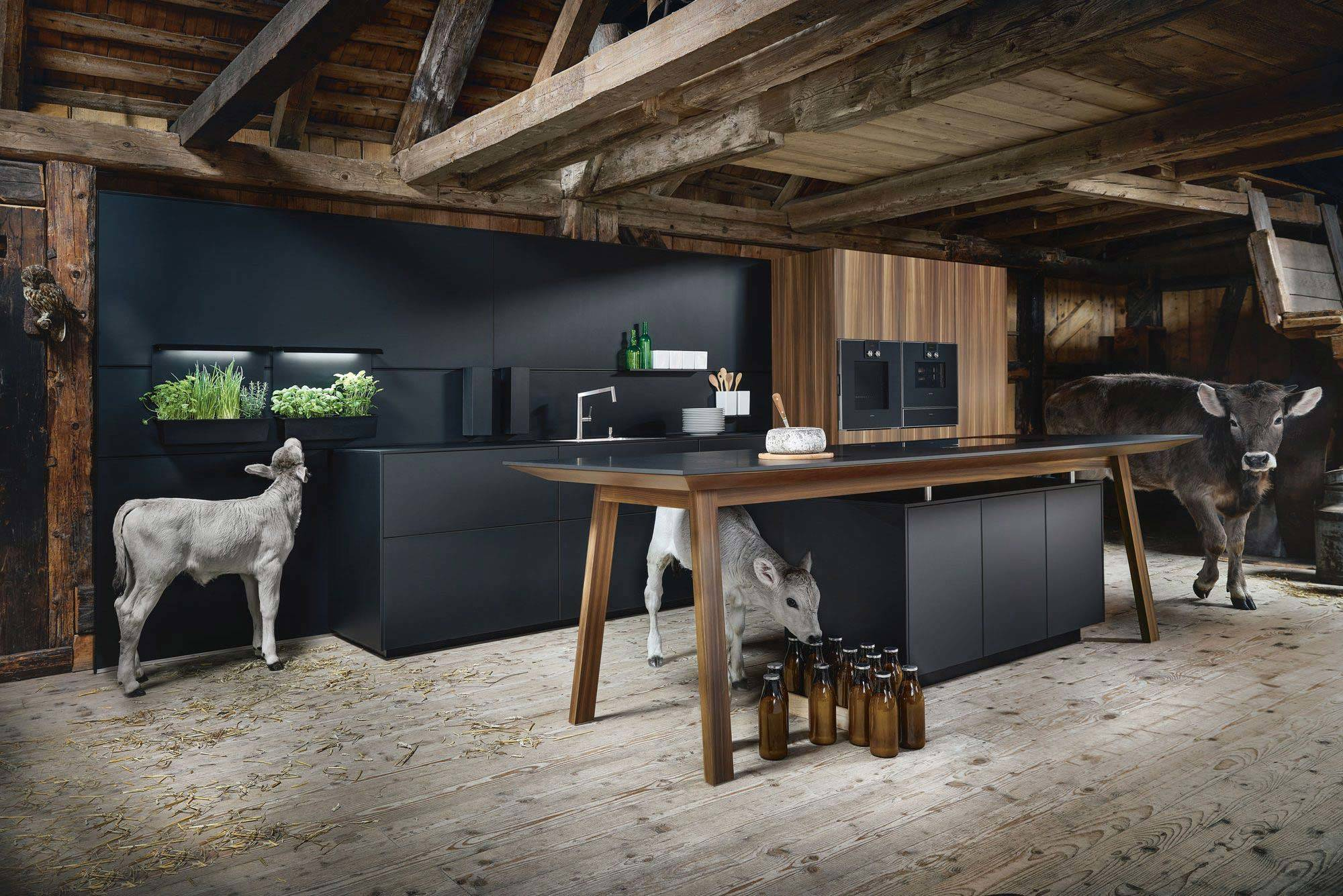 Küche schwarz modern